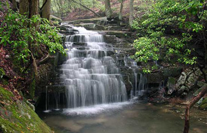 Big Laurel Falls is just one of four amazing falls on this hike.