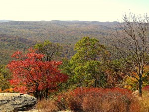 Stunning autumn views from the summit of Bear Mountain