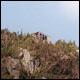 Crag Camp hike