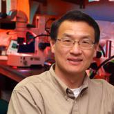 Lin Mei, M.D., Ph.D.