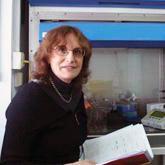 Dorit Ben-Shachar, Ph.D., D.Sc.