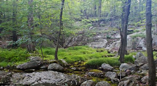 Amazingly varied scenery on the Pine Meadow Lake hike.